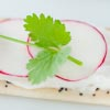 Poppie-seed cracker with radish and cilantro