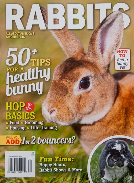 """Rabbits"" magazine, Cover Photo"