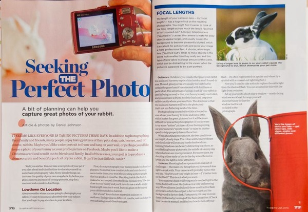 2013 Rabbits USA article on Photographing Rabbits; text and all photos